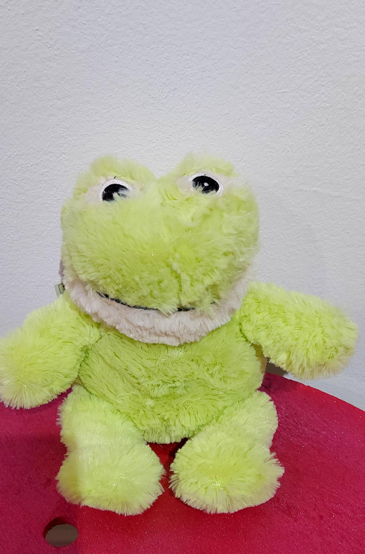 bouillotte grenouille
