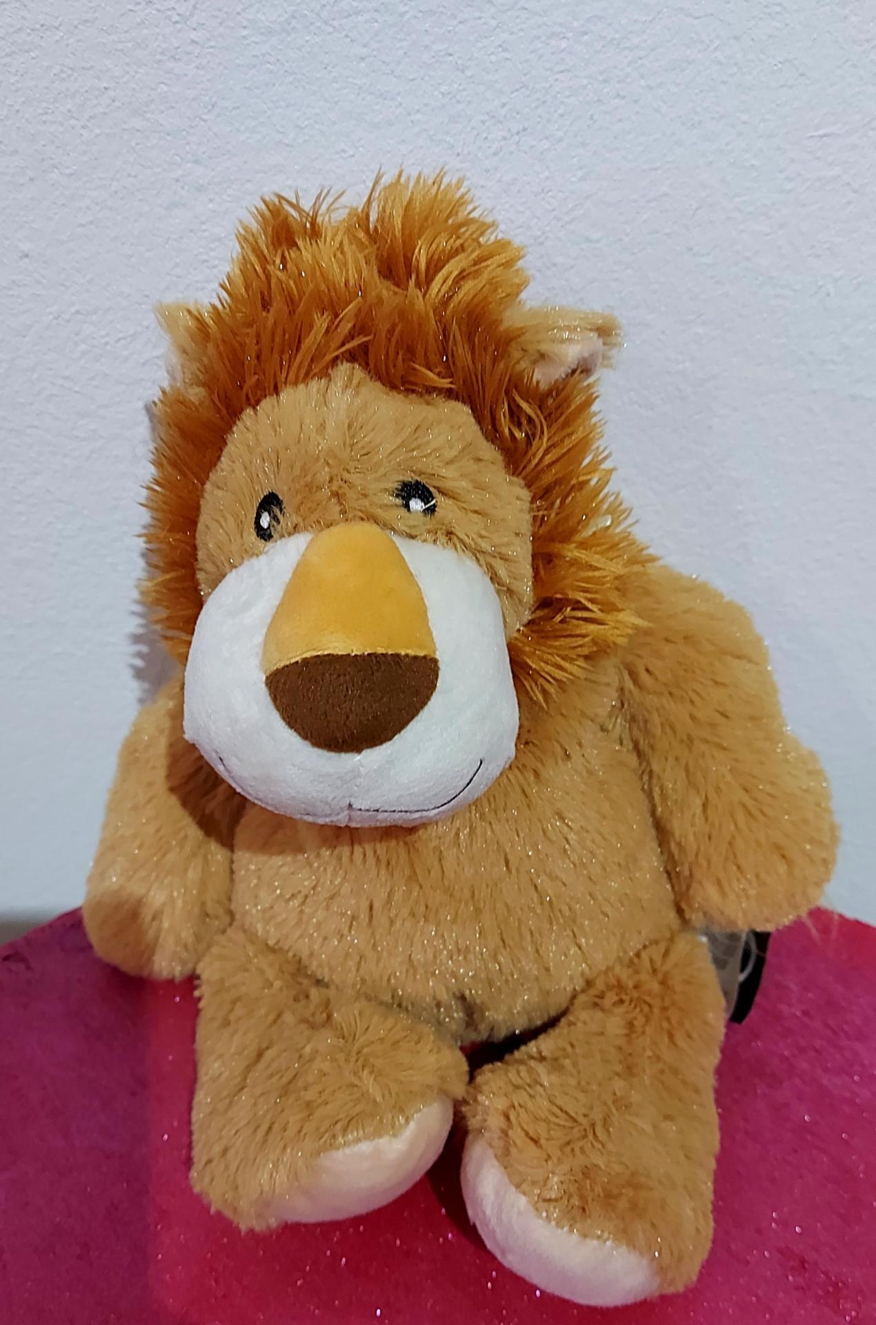 Peluche lion bouillotte