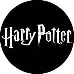 Boutique harry potter 1