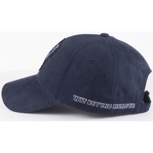 Casquette harry potter ravenclaw cotton division