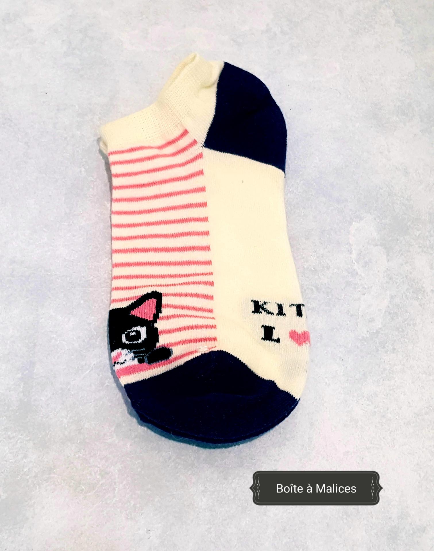 Chat chaussette