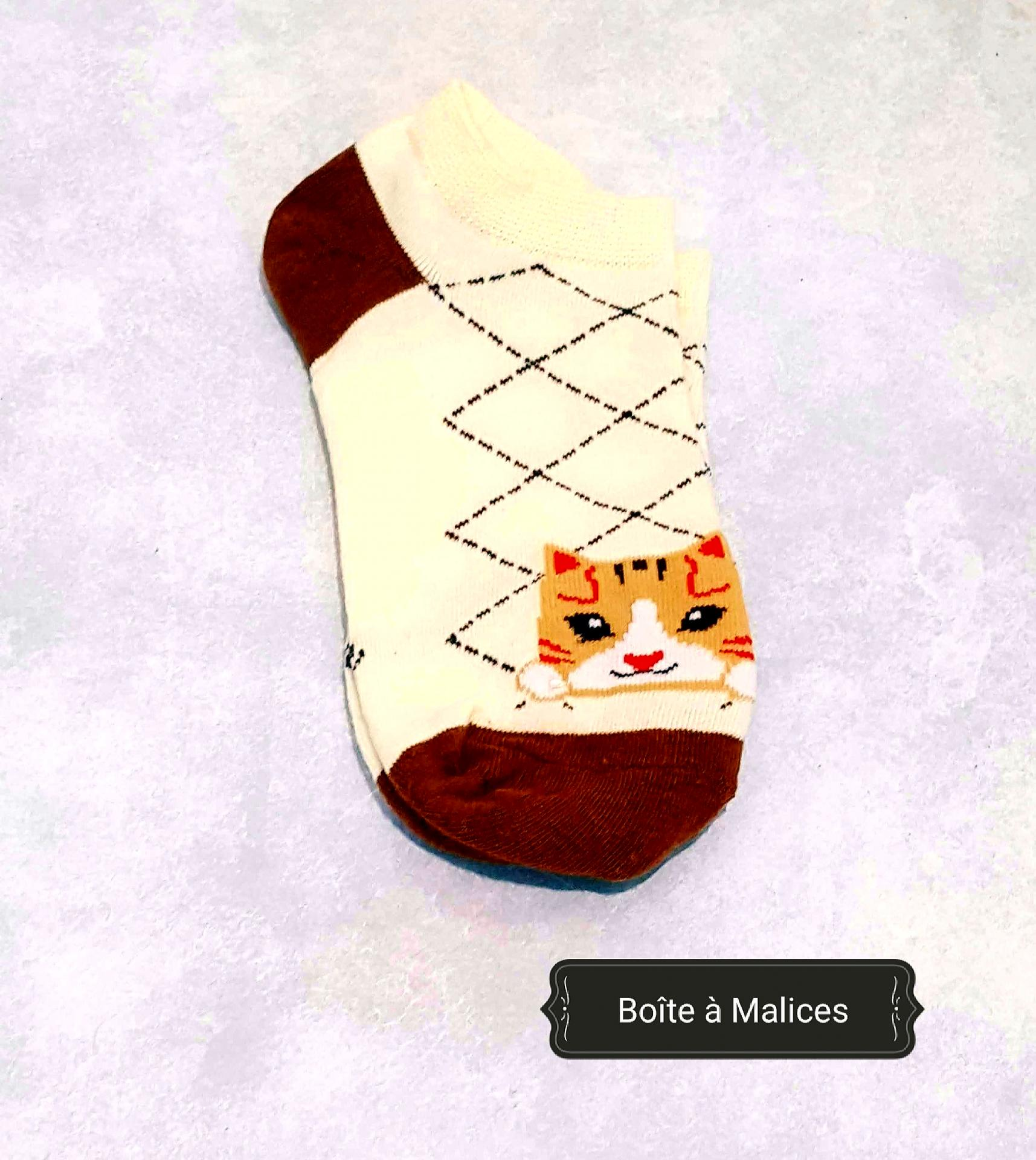Chaussette chat