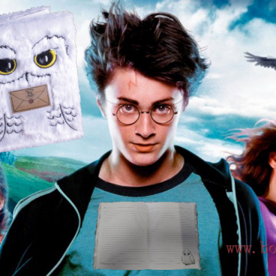 Notebook harry potter hedwige 2