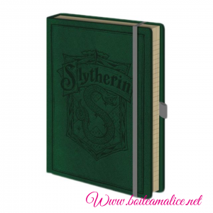 Notebook serpentard