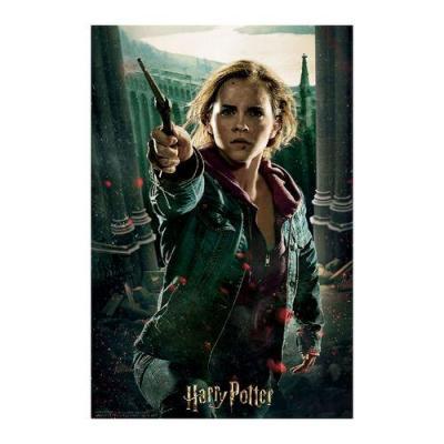Puzzle lenticulaire 3d hermione harry potter 1