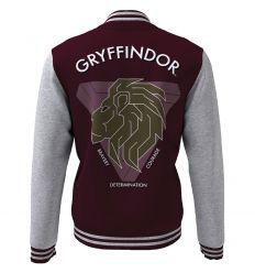 Teddy harry potter gryffindor blazon